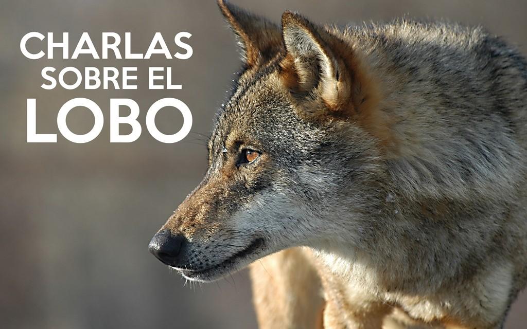 CHARLAS SOBRE EL LOBO IBERICO JAVIER TALEGON WWW.LLOBU.ES