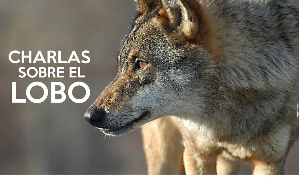 CHARLAS SOBRE EL LOBO