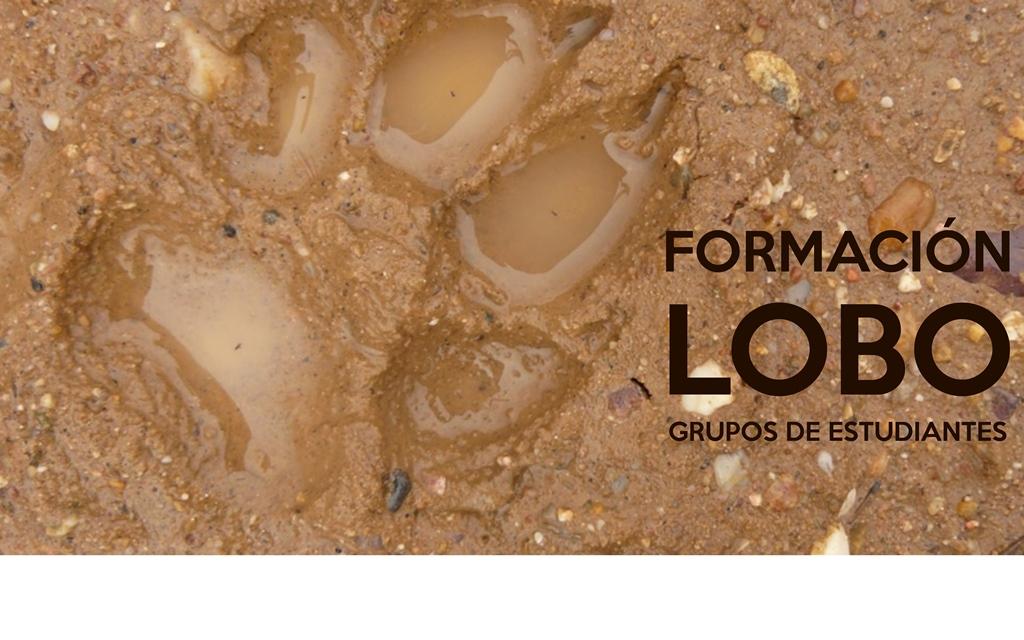 FORMACION LOBO ESTUDIANTES